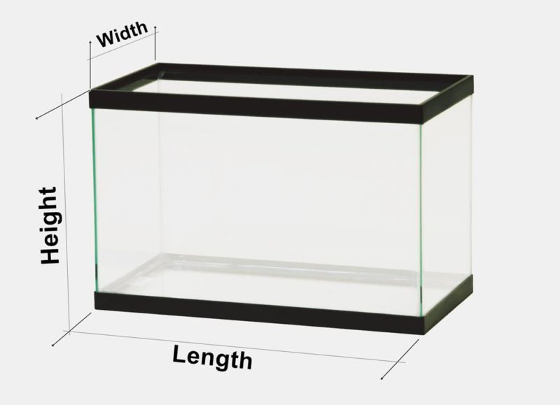 How large fish tank sizes do you need for 20 gallon fish tank dimensions
