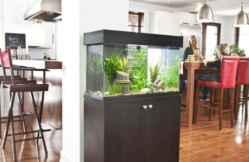 Fluval Accent fish tanks with cabinets