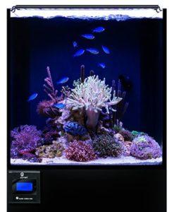 current usa orbit marine led aquarium light
