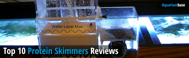 Best Protein Skimmer Review