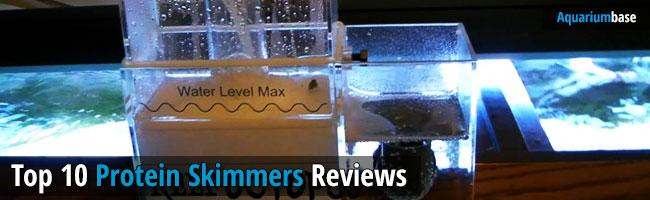 Best Protein Skimmer Review