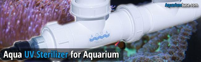 Aqua UV Sterilizer - aquarium uv sterilizer