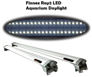 Finnex Ray 2 LED