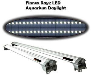 finnex ray 2