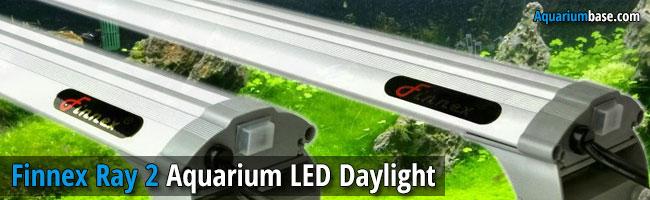 Finnex Ray 2 LED Daylight