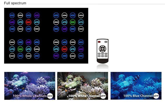 T247 Full Spectrum Features