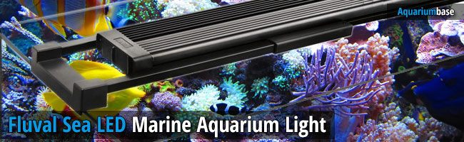 Fluval SEA LED Marine Lamp