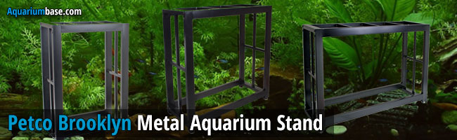 Petco Brooklyn Aquarium Stand Review