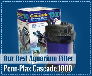 best aquarium filter cascade 1000