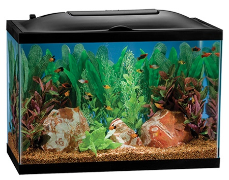 Marineland bio-wheel 20 gallon aquarium kit