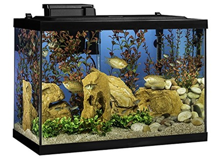 Tetra Kits 20 gallon fish tank