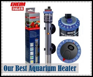 eheim jager the best heater