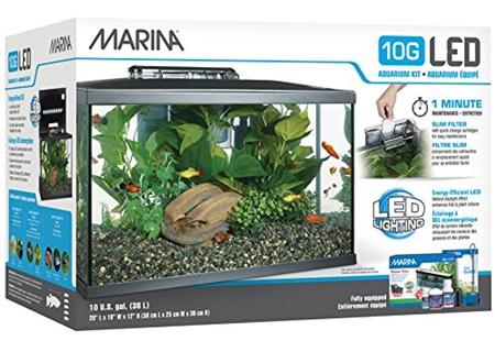 Marina 10G Starter Kit