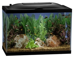 Marineland 10 gallon starter kit