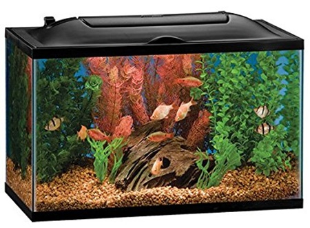 Marineland 10 gallon bio-wheel aquarium