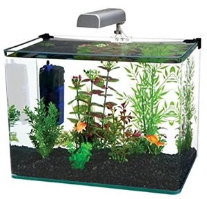 Penn Plax curve corner glass aquarium