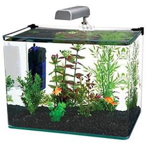 Penn Plax curve corner glass aquarium