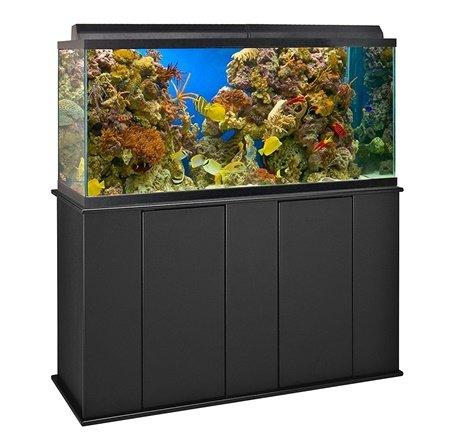 Aquatic Fundamentals Upright Stand